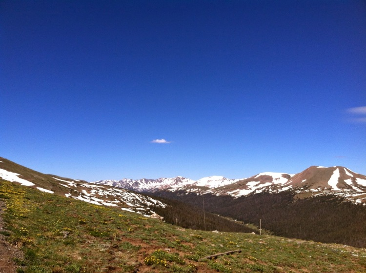 Officially in the alpine tundra