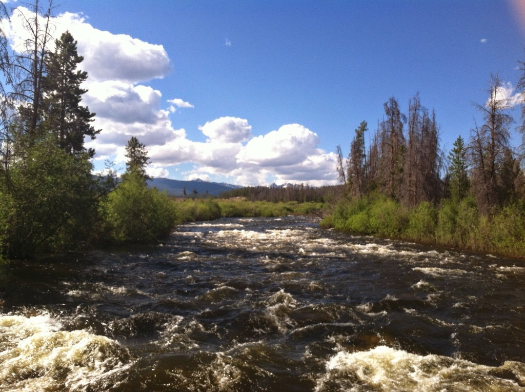 A rushing river flows away from the camera with green shrubs lining its banks on a blue sky day. Mountains and white puffy clouds are on the horizon.