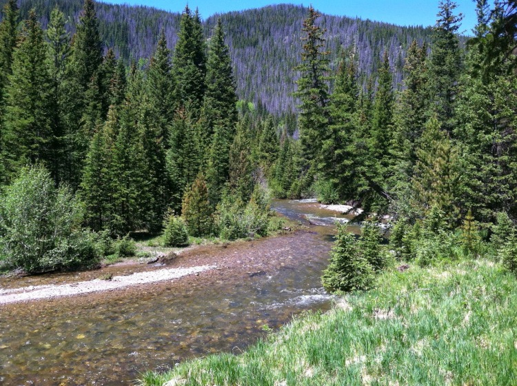 On the banks of the Colorado!