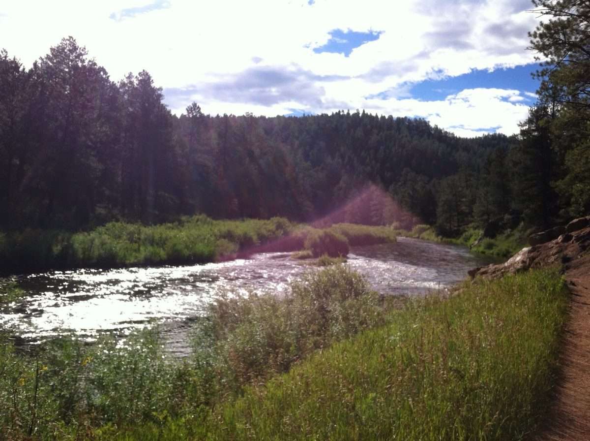 the sun rises over the south platte river at the campground in pike national forest