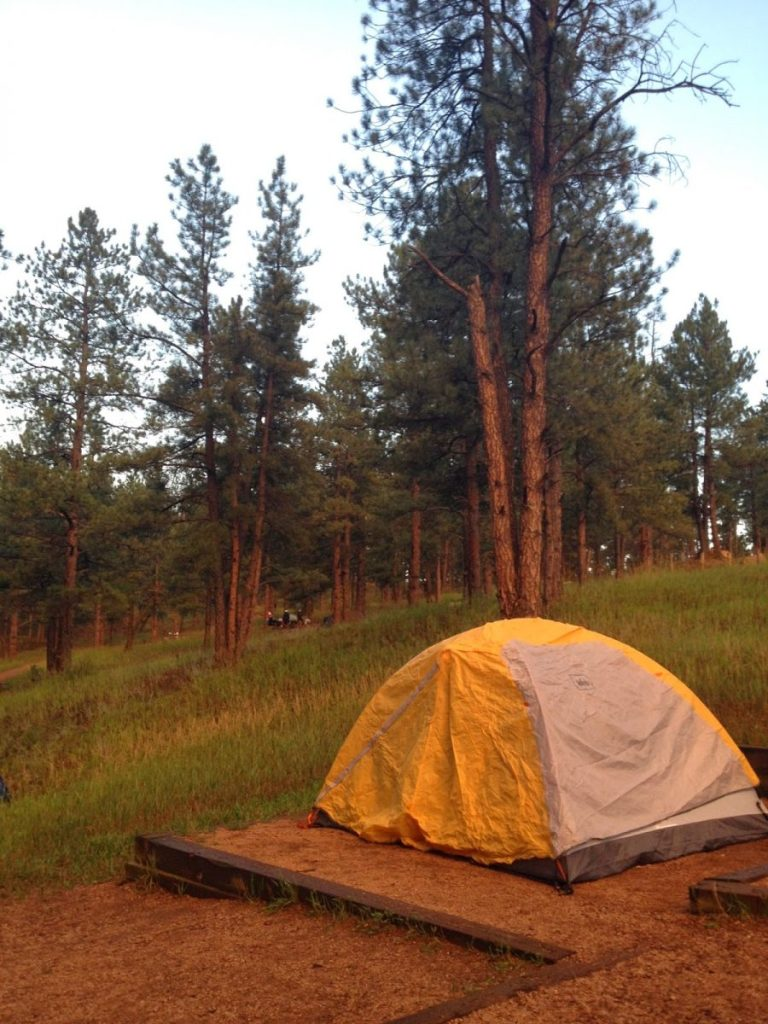 a yellow tent on a tent pad in front of  a grassy hill with lots of tall pine trees