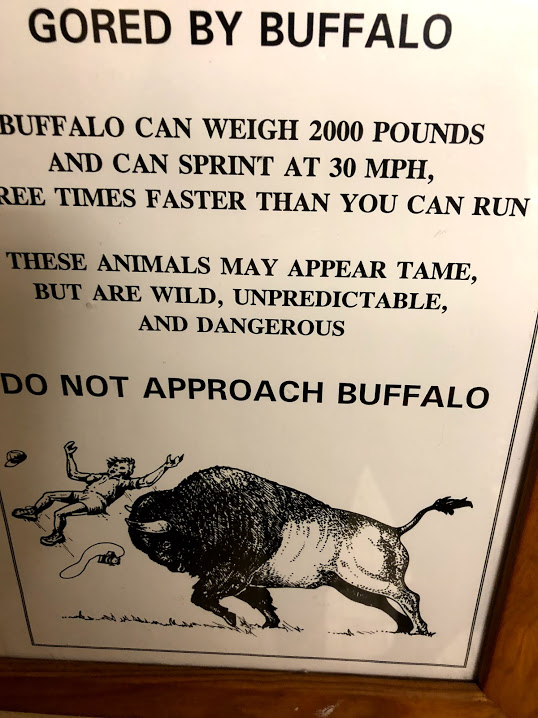 buffalo safety wildlife watching sign in yellowstone campground bathroom