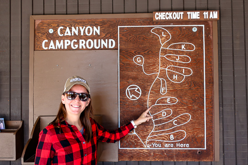 beginner camper points to the E Loop of the Canyon Campground in Yellowstone National Park