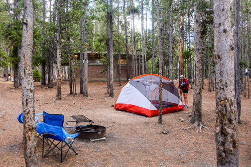 beginner's guide to canyon campground yellowstone camping