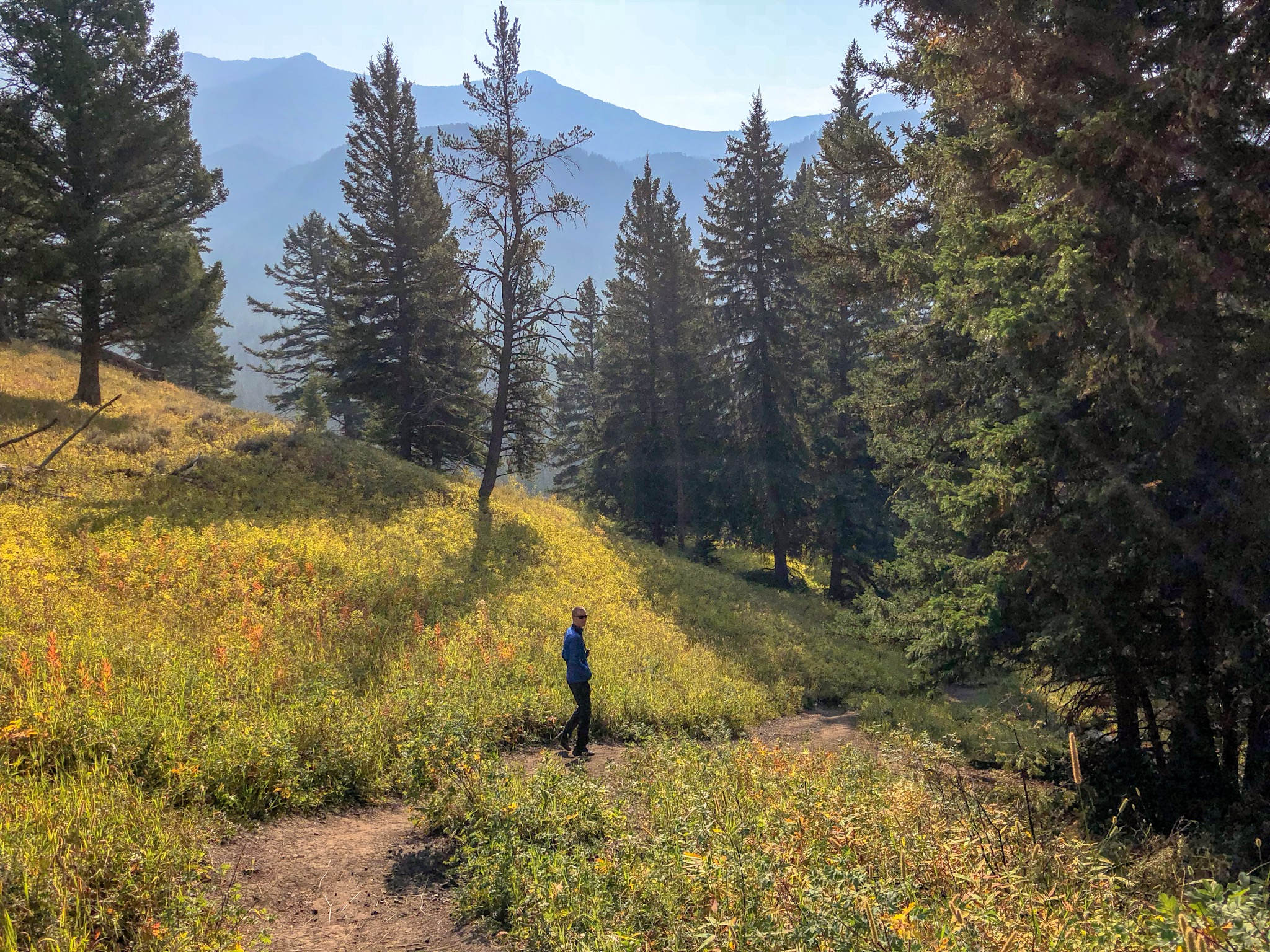 man hiking trout lake trail yellowstone beginner's guide