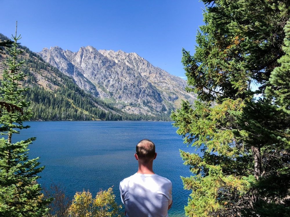 a man stands in front of a large mountain lake, framed by evergreen trees and a bright blue, cloudless sky jenny lake hiking grand teton national park