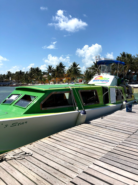 belize express water taxi on the dock in caye caulker belize. palm trees and bright blue sky in the background.