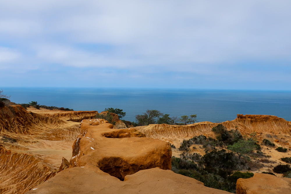 broken hill overlook torrey pines state reserve san diego la jolla california hiking beginner friendly