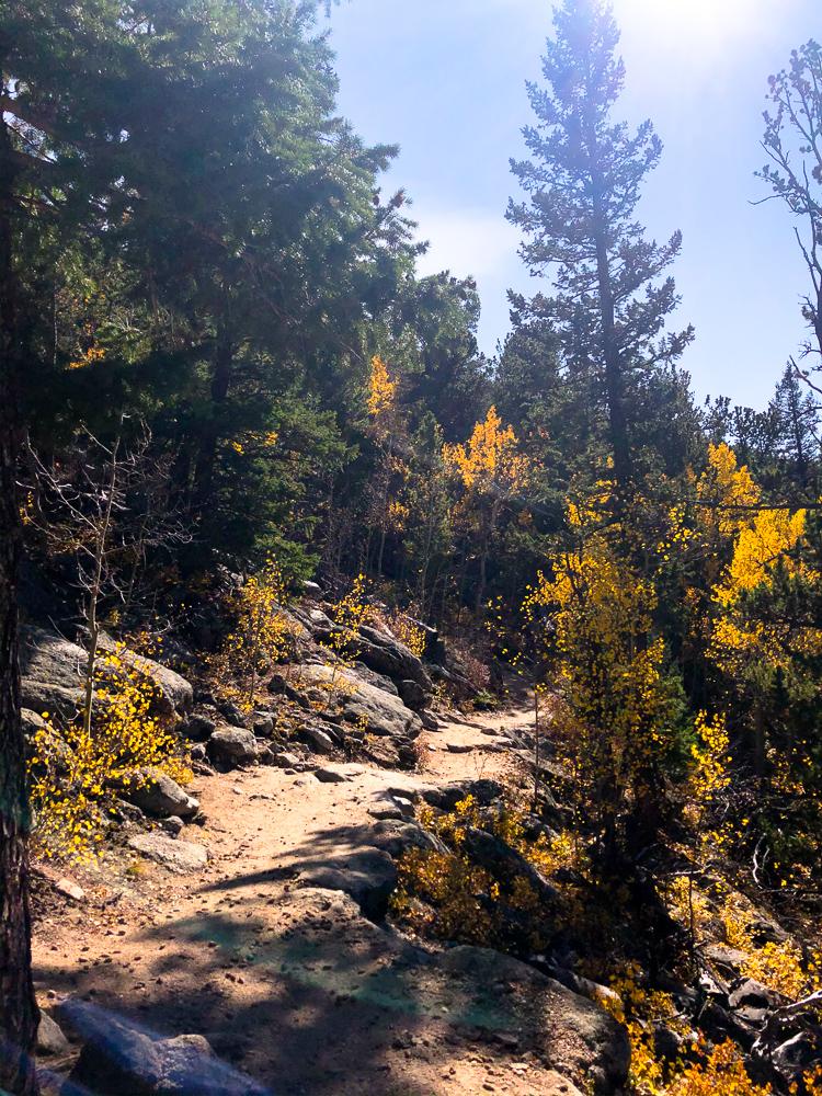 golden gate canyon beginner hiking leaf peeping raccoon trail