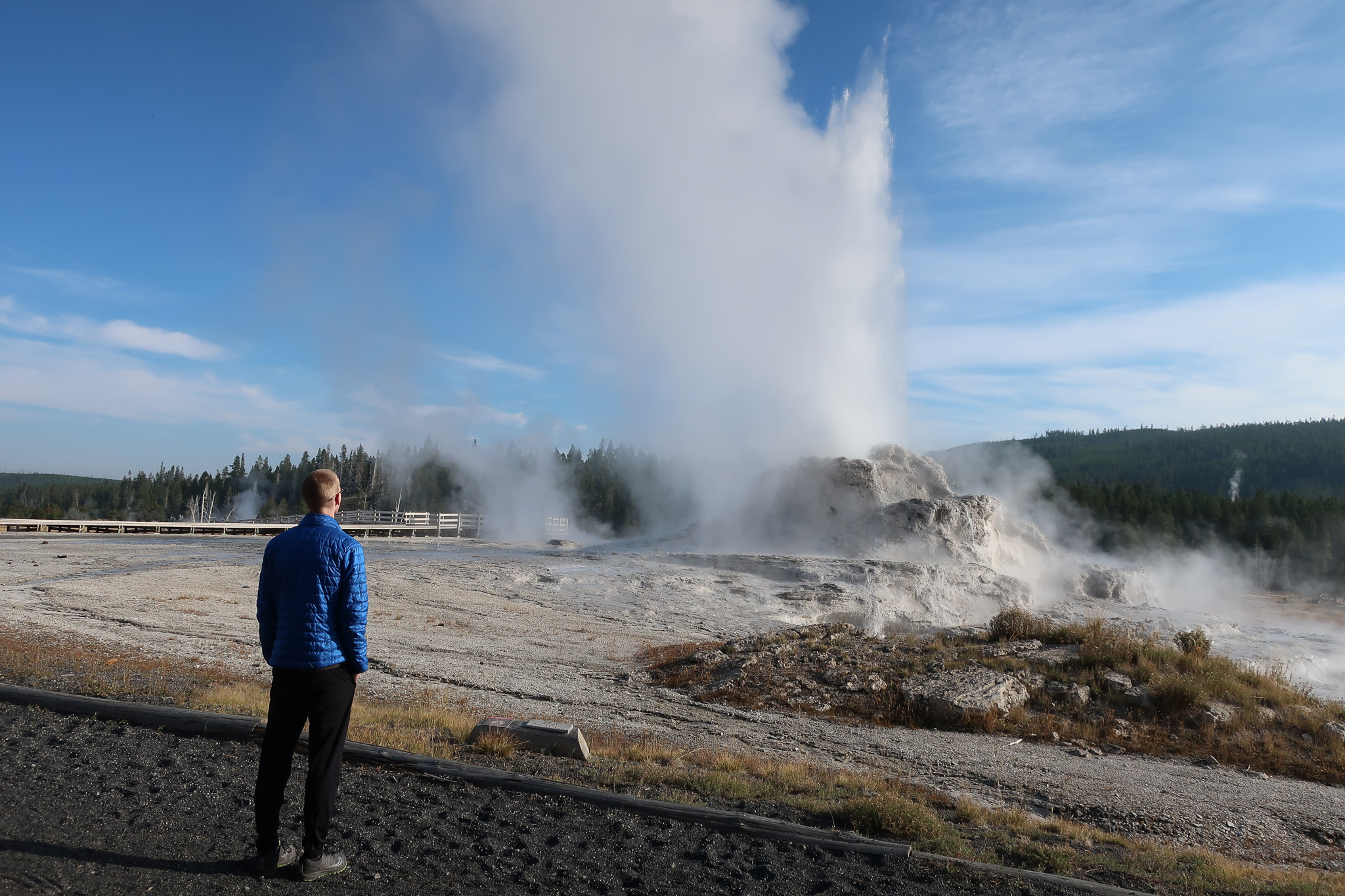 castle geyser erupts as a man observes from the adjacent walking trail